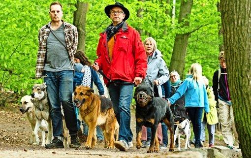 Berlin: Das Hundeverbot ist verboten - Panorama - Stuttgarter Zeitung