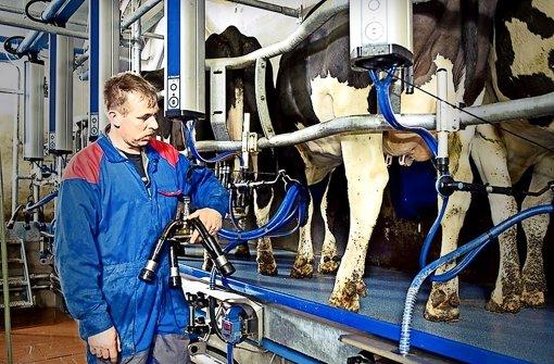 Landwirtschaft: Quoten-Aus macht vielen Bauern Angst - Stuttgarter Zeitung