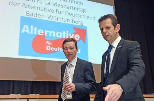 Landesparteitag der AfD: Lügenvorwürfe und Spießrutenlauf - Stuttgarter Zeitung