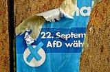 AfD streitet über Personen und Programme