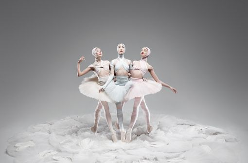 Stuttgarter Ballett: Shades of White
