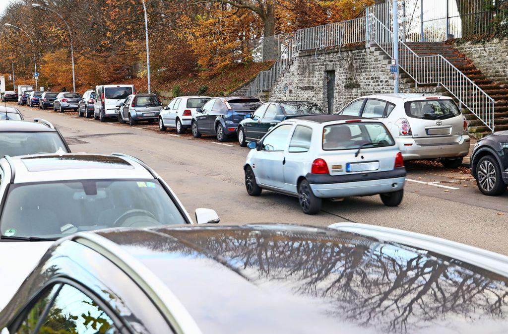 Neubaugebiet in der Ludwigsburger Oststadt - Fuchshofstraße: Alleen statt Autokolonnen - Stuttgarter Zeitung