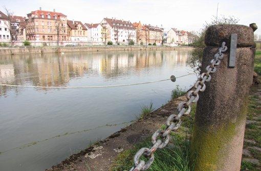 Die Neuentdeckung des Neckars