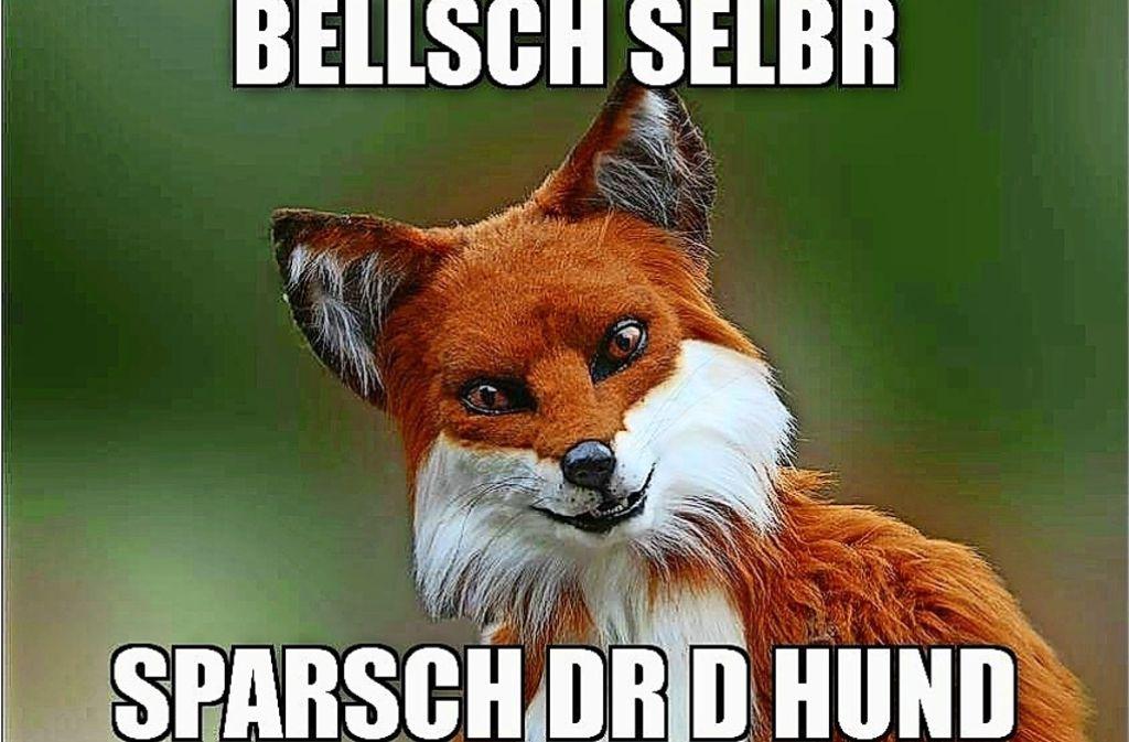 Lustige Bildchen Im Netz Memes Als Lustiges Sprachrohr Im Internet Wissen Stuttgarter Zeitung