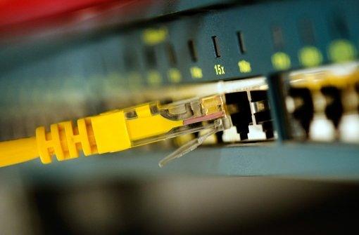 Mit einem LAN-Kabel kann man sich den Zutritt in die Internetwelt verschaffen. Foto: dpa-Zentralbild