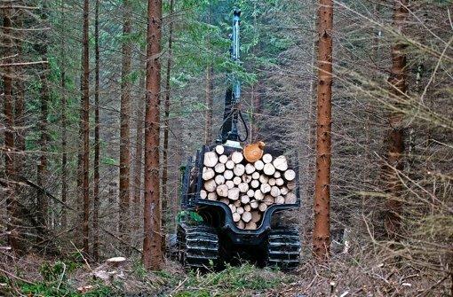 Forstverwaltung vor Veränderungen