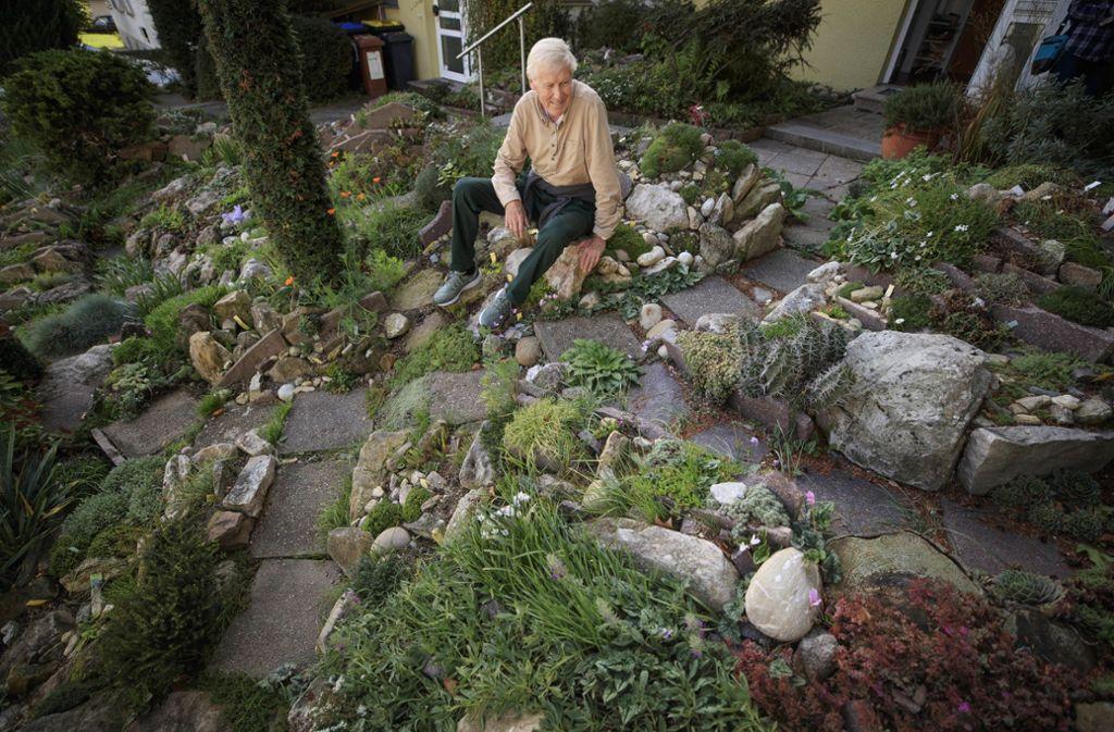 Naturnaher Steingarten in Waiblingen - Die Alpen liegen direkt vor der Haustür - Stuttgarter Zeitung