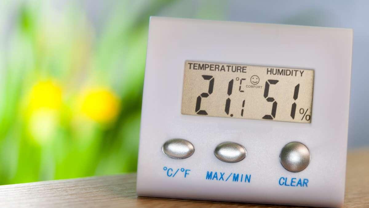Luftfeuchtigkeit Erhohen Die 9 Effektivsten Tipps