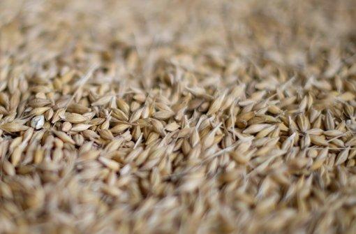 Getreidehandel quer durchs steinzeitliche Europa