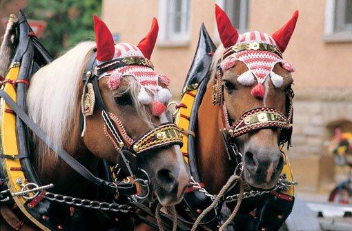 249. Ludwigsburger Pferdemarkt