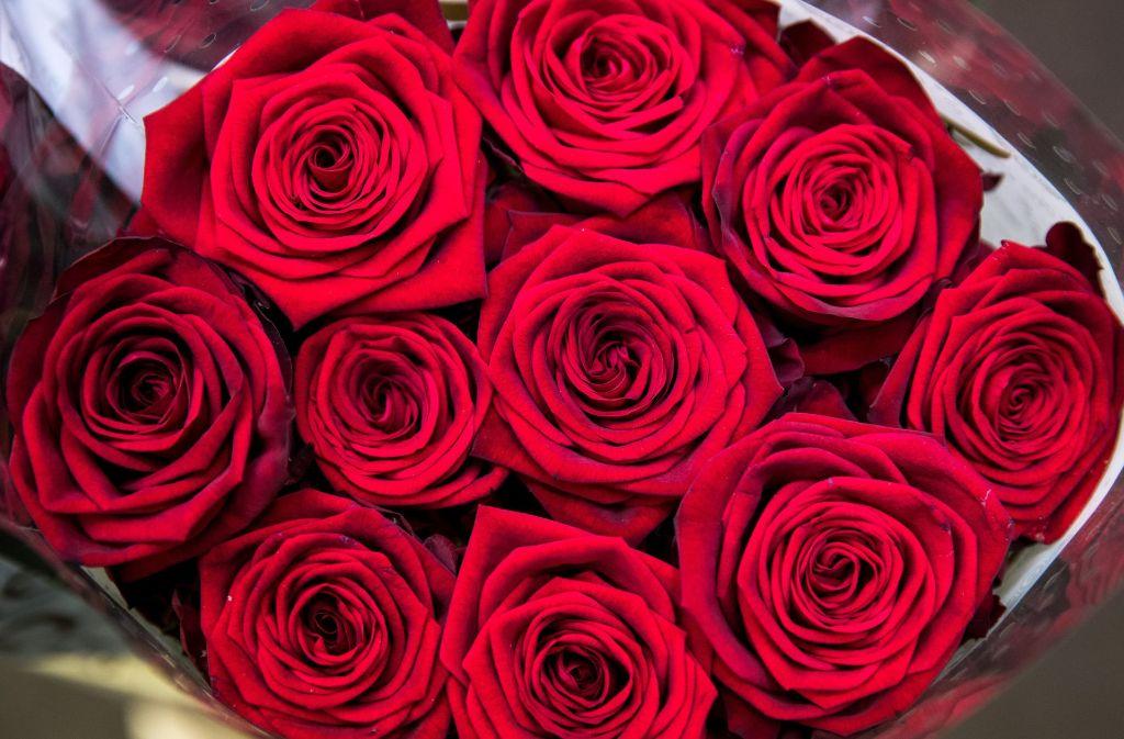 valentinstag in stuttgart romantisch und kostenlos pl tze f r verliebte stuttgart. Black Bedroom Furniture Sets. Home Design Ideas