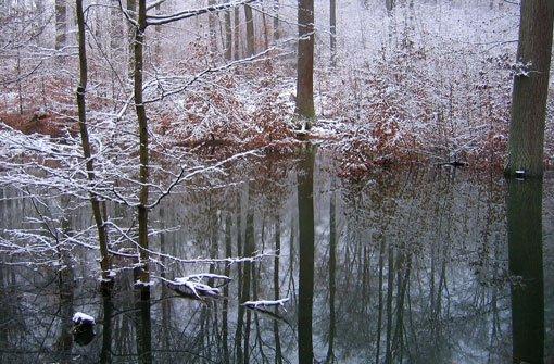 Winter legt nur eine kleine Pause ein