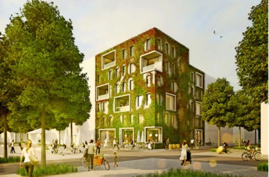 Architekten Heilbronn bungesgartenschau 2019 in heilbronn herber rückschlag für den