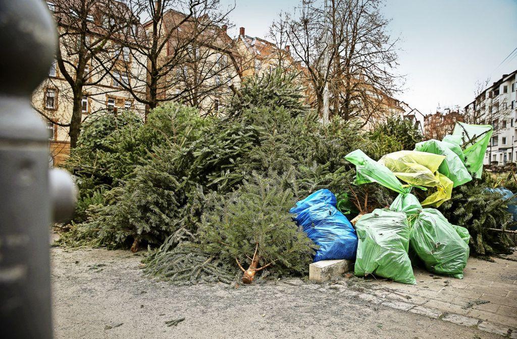 Weihnachtsbaum entsorgen ludwigsburg 2018