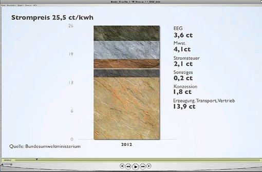 Grafik aus dem Film: Der Strompreis 2012. 2013 werden es 1,68 Cent mehr. Foto: StZ