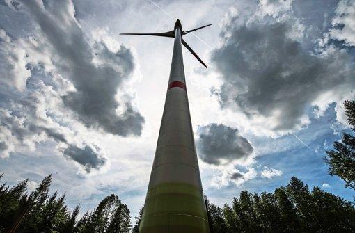 Am Tauschwald weht genug Wind