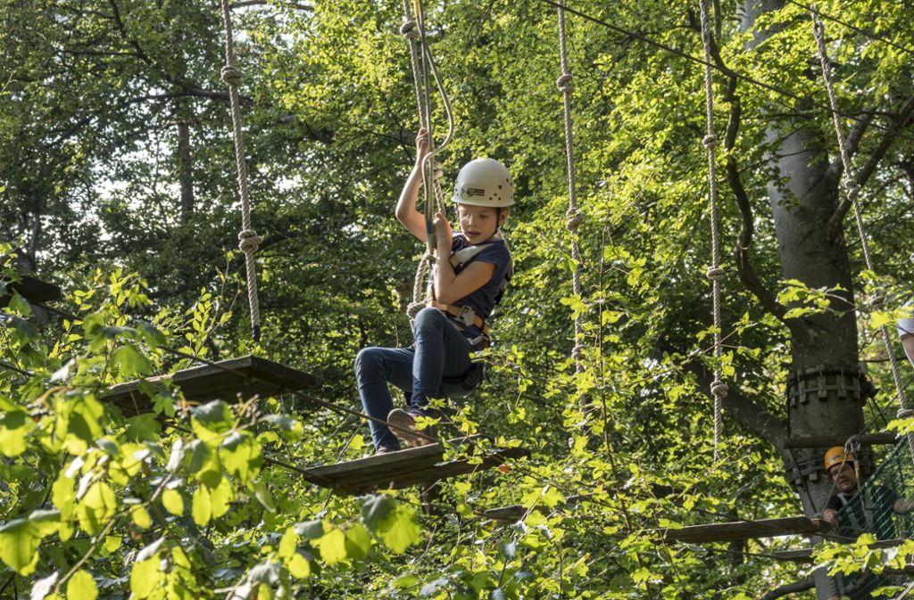 Baum Kletter Gurt : Klettern im waldseilgarten: wie tarzan von baum zu landkreis