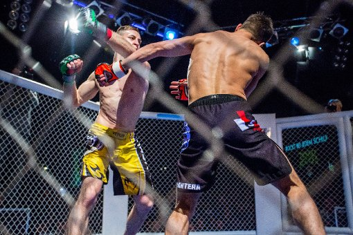 Impressionen aus dem MMA-Käfig