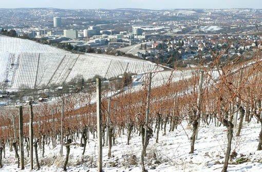 Idylle in den Stuttgarter Weinbergen - der Winter zeigt sich von seiner schönsten Seite. Foto: Leerfotograf chrisho