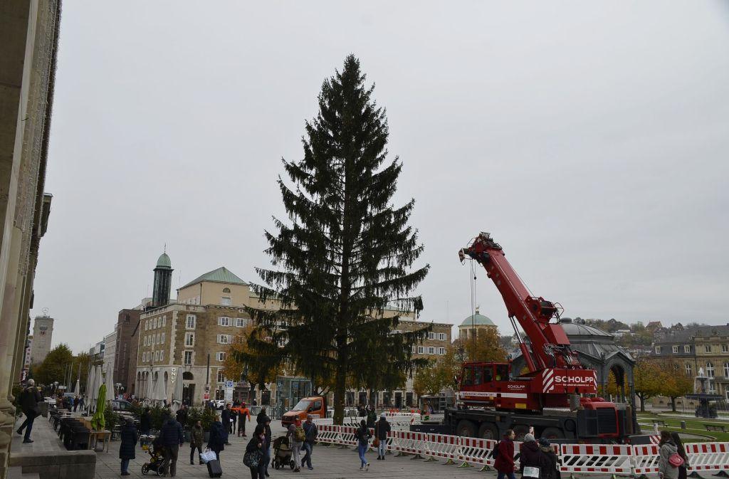 Weihnachtsbaum Ab Wann.Stuttgart Weihnachtsbaum Steht Auf Dem Schlossplatz Stuttgart