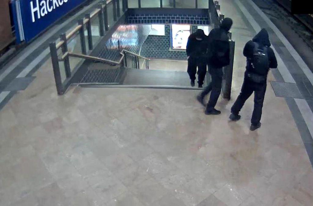 Diebstahl Von Big Maple Leaf Polizei Sucht Mit Video Nach