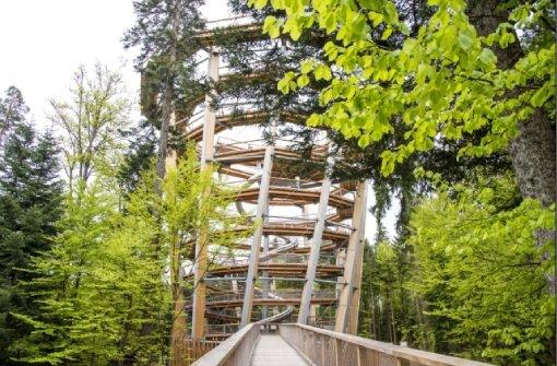 Der Baumwipfelpfad Bad Wildbad im Sommer