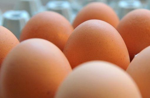 Eierwerfer stehen vor Gericht