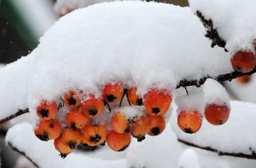 Der Schnee hat auch sein Gutes: Im Kreis Biberach hat er einem kleinen Mädchen vermutlich das Leben gerettet. Foto: dpa