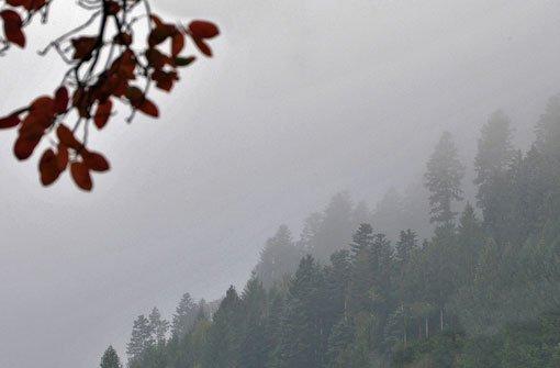 Regen und Schnee bestimmen das Wetter