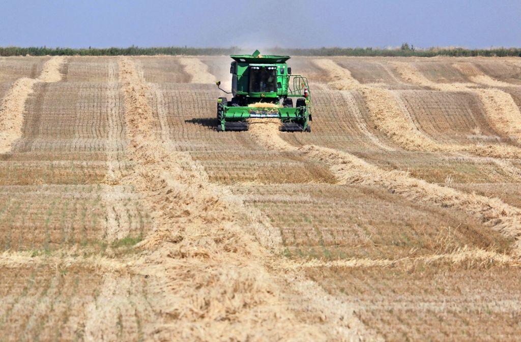 Frau Sucht Landwirt - Partnersuche auf blogger.com
