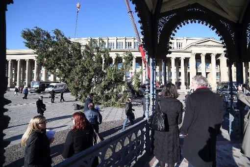 Weihnachtsbaum am Schlossplatz steht