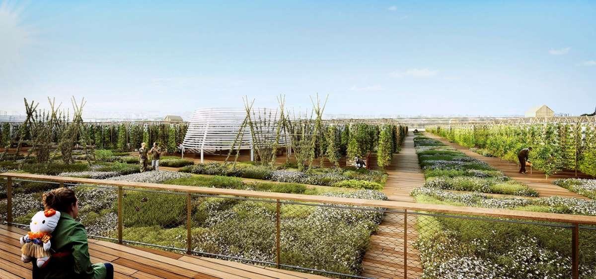 Urban Gardenig In Paris Ein Garten Eden Im Grossstadtdschungel Panorama Stuttgarter Zeitung