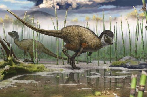 Ist die Evolutionstheorie alternativlos?