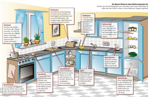 Die schlimmsten Hygiene-Risiken lassen sich mit einfachen Mitteln eingrenzen. Foto: tkk