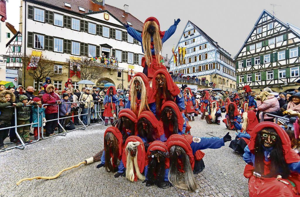 Pferdemarkt Und Faschingsumzug Herrenberg Tierische Schonheiten Und