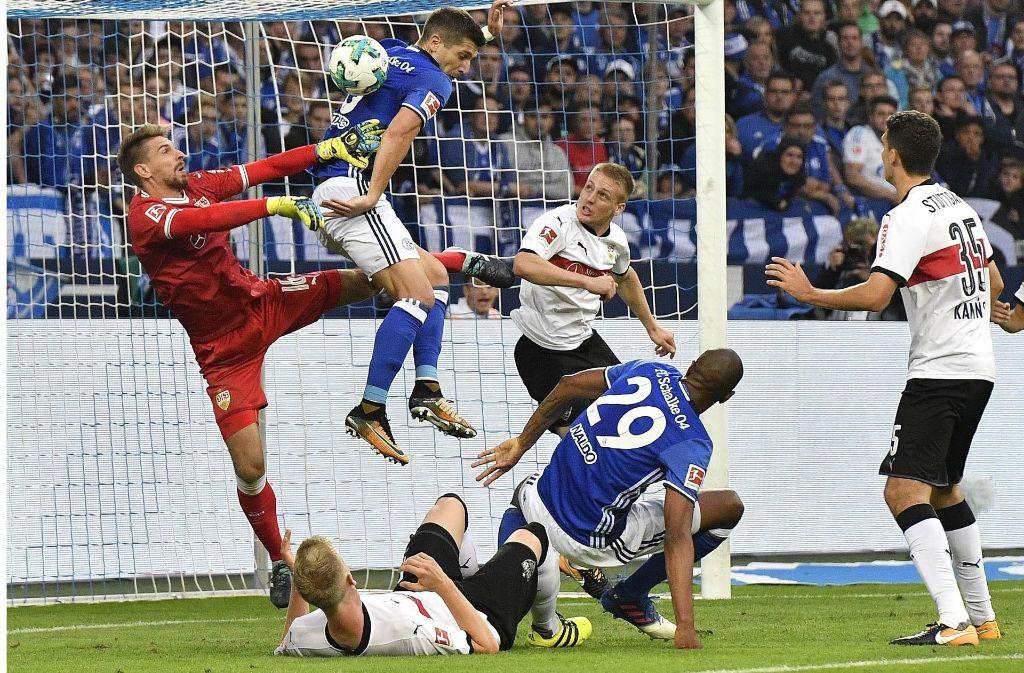 Stuttgart Schalke Live