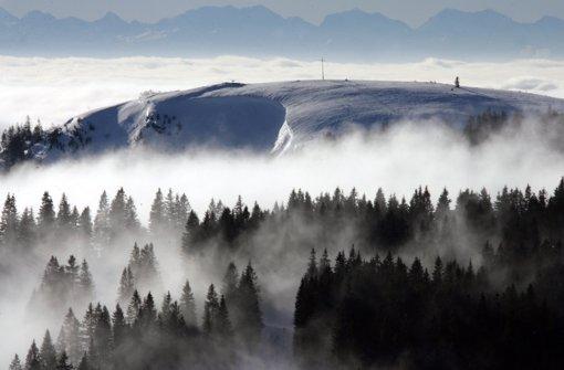 Bergwacht rettet verirrte Skifahrer