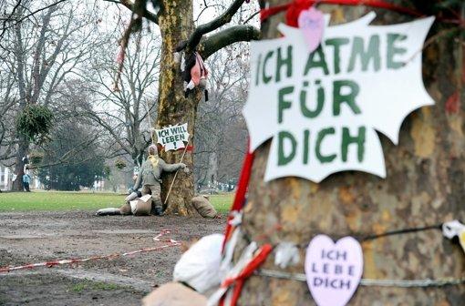 Termin für Baumfällung steht fest, 07.02.2012, stuttgarter-zeitung.de