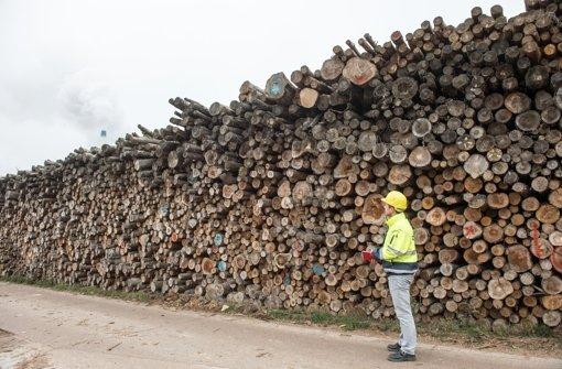 Holzverkauf ist ein heißes Eisen