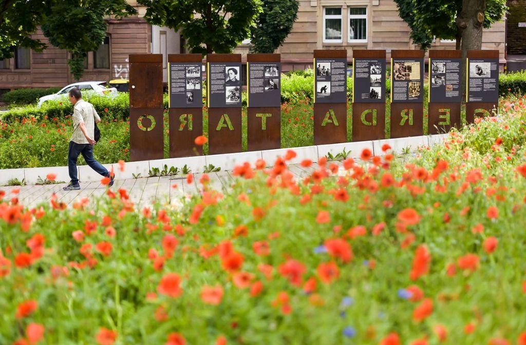 Naturschutz in Stuttgart: Die Stadt lässt Blumen blühen
