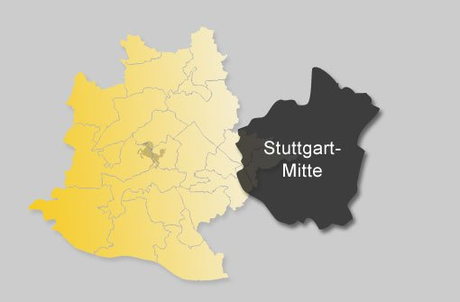 So hat Stuttgart-Mitte gewählt