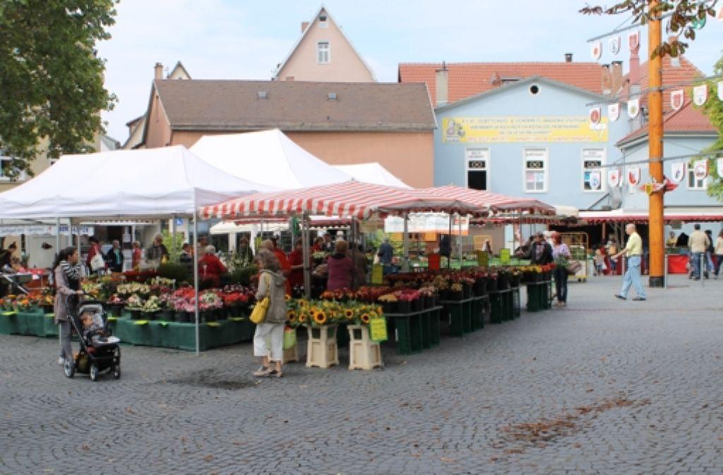 Bekanntschaften marktplatz